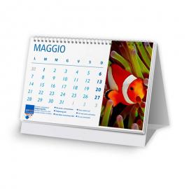 Calendari 21x14,8 - fogli 12+1